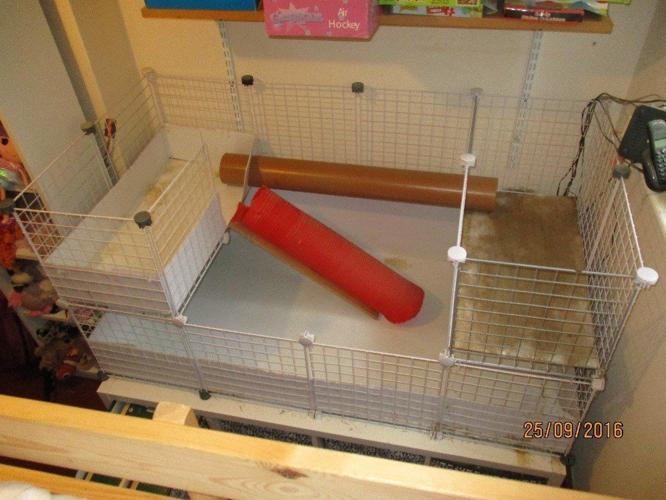 2 level indoor hutch / C and C guinea pig / rabbit cage
