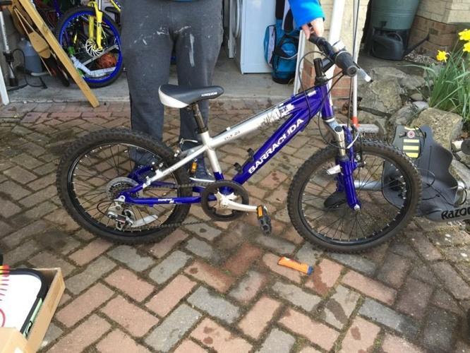 Barracuda mountain bike.