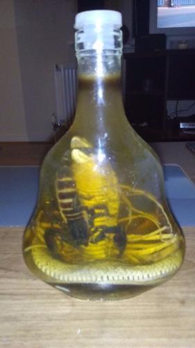 Cobra & scorpion in formaldehyde...