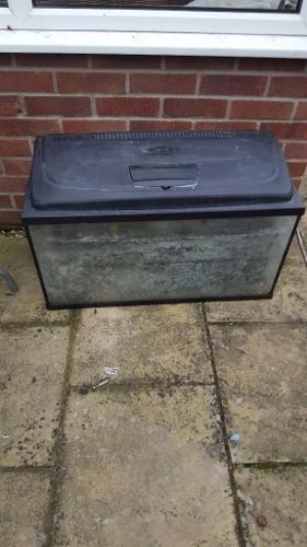Fish tank with external filter £10
