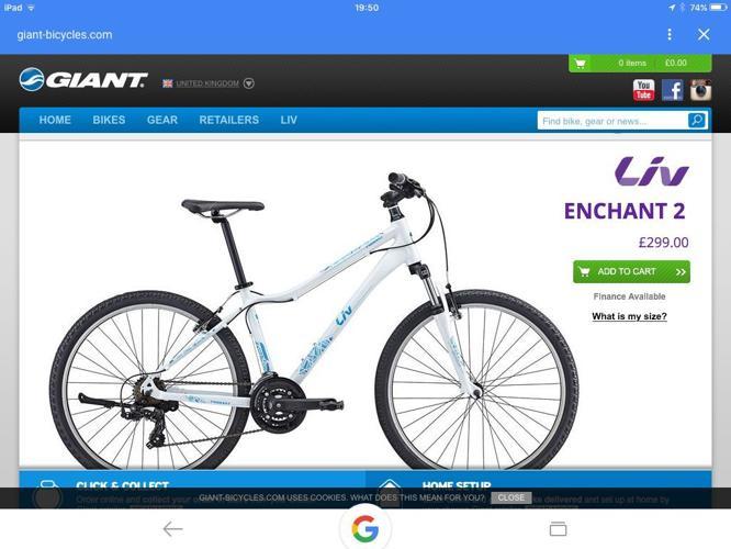 Giant Liv woman's mountain bike