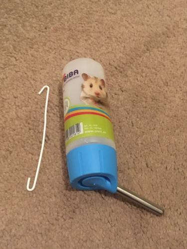 Hamster Water Bottles