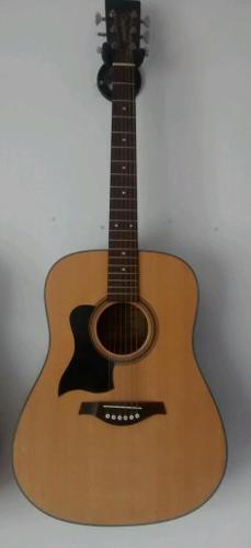 Left handed guitar