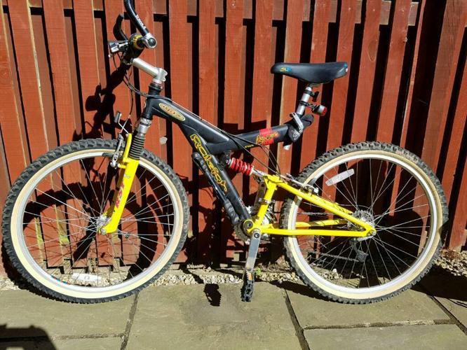 Mens Raleigh Mountain bike (full suspension)
