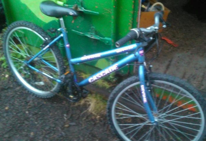 Mountain bicycle 18