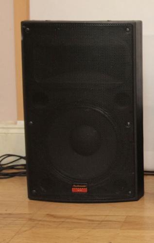 Pair of studiomaster vx12 speakers 250watts