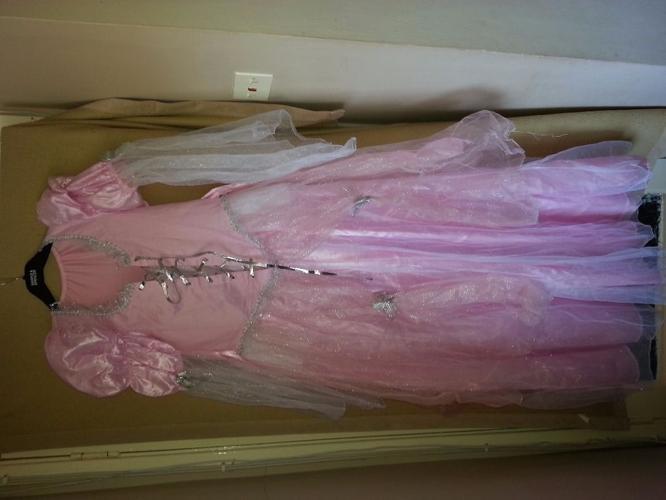 Pink fancy dress costume