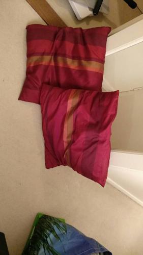 Silk covered cushions (pair)