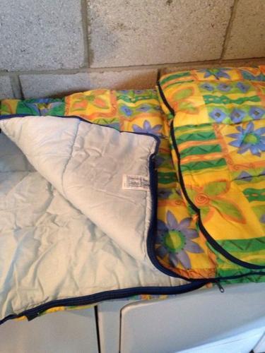 Sleeping Bag (new)