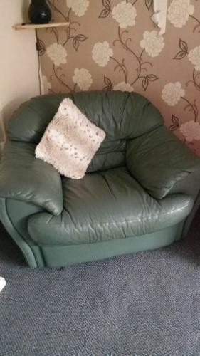 suite need gone asap