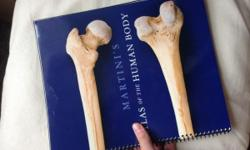 Book 1- Fundamentals of Anatomy and Physiology, 9th