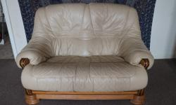 2 seater sofa couch in great clean condition from a pet