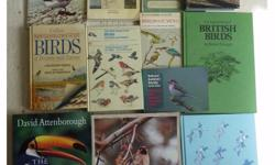 Job Lot of Bird Books. Anyone Interested In Birds Or