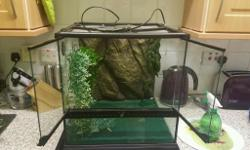 Exo terra 45 x45 x45cm vivarium Comes with background,