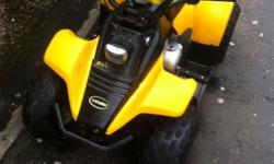 Up for sale a 50cc kazuma quad electric start,semi