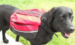 2 back packs for dogs to help you with your shopping,