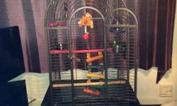 Parrot cage & all toys included. Brilliant clean