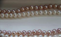 freshwater Pearl necklace with silver clasp. 16.5 inch