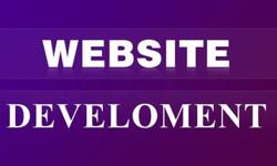 PROFESSIONAL & CUSTOMIZED WEB DESIGNS NO DEPOSITS. FREE