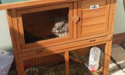 Friendly female rabbit with hutch for sale. Hutch only