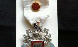 The Royal Masonic institution for girls stewards medal