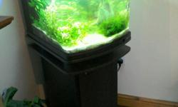 For sale. Tropical fish tank and full setup. With