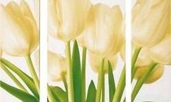 Tulip design canvas in three parts Modern and clean
