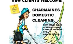CHARMAINE'S DOMESTIC CLEANING FOR ALL YOUR DOMESTIC