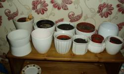 11 white plant pots various sizes and shapes all in